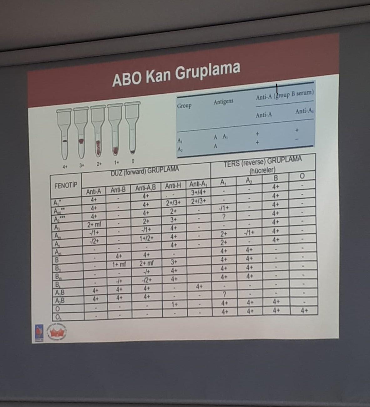 ABO ve Rh kan grubu sistemleri